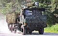 JGSDF Heavy Truck Type 73 001.JPG