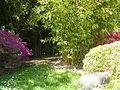 Japanese style garden-Auteuil 02.JPG