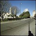 Jardim da Praça de Londres, Lisboa, Portugal (3417194245).jpg