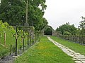 Jardin des Ursulines (jardin des Plantes d'Avranches).jpg