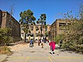 Jeanne d Arc School Iran Tehran Backtyard.jpg