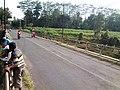 Jembatan Sengguruh Baru, penghubung wilayah Kepanjen dengan Pagak (ini mengarah ke selatan) - panoramio.jpg