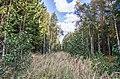 Jersikas pagasts, Latvia - panoramio (26).jpg