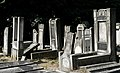 Jewish cemetery Lodz IMGP6370.jpg