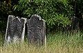 Jewish cemetery Zyrardow IMGP7376.jpg
