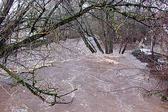 Johnson Creek (Willamette River) - Johnson Creek during flood at Southeast 45th Avenue, January 2009