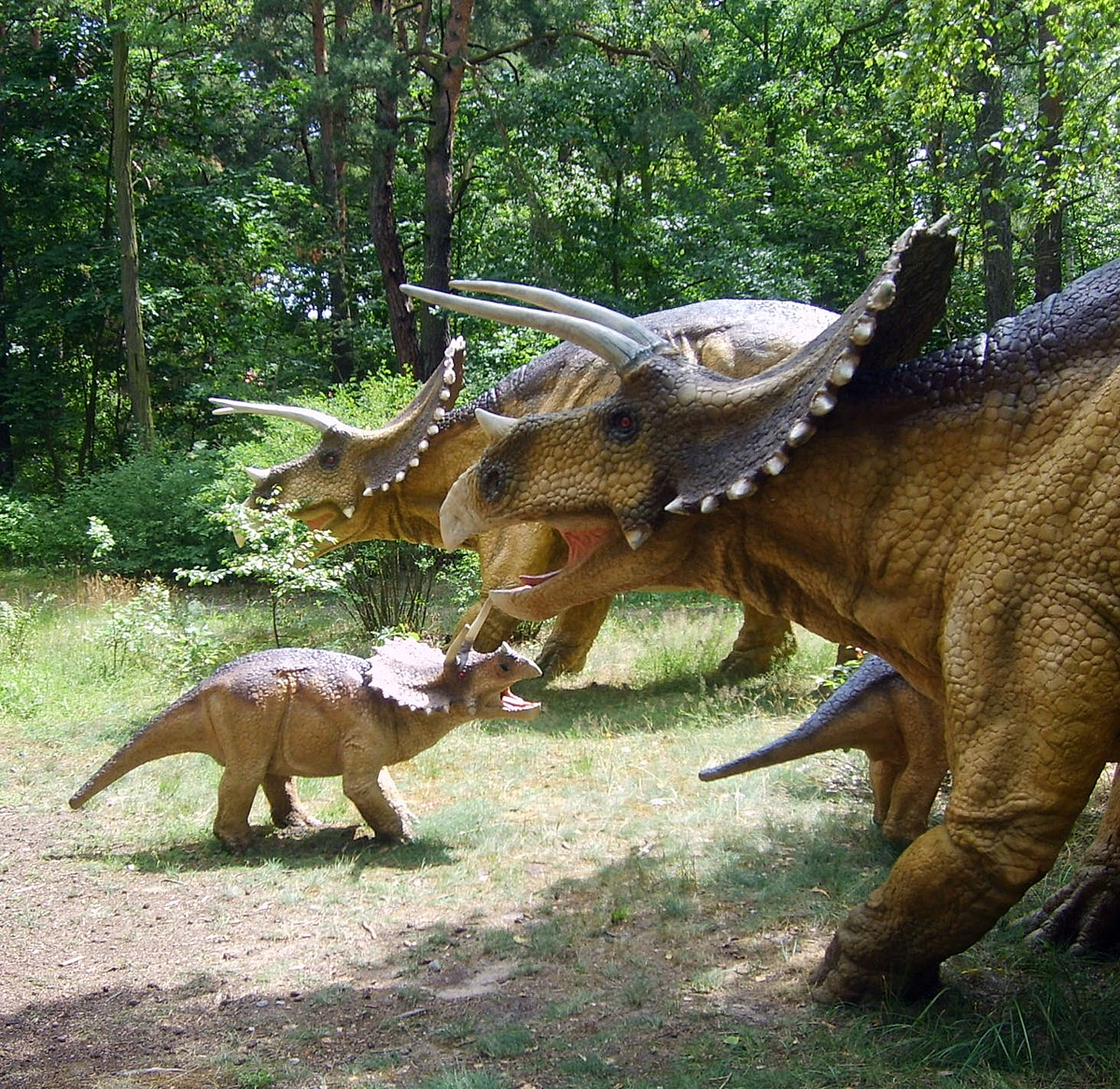 les chasseurs de dinosaures  u2014 wikip u00e9dia