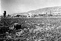 KIBBUTZ MASSADA IN THE JORDAN VALLEY. מראה כללי של קיבוץ מסדה בעמק הירדן.D393-040.jpg