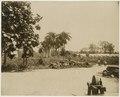 KITLV - 39061 - Muller, Julius Eduard - Paramaribo - Plantation Nieuwgrond (cocoa, cereals, bananas) in Surinam - circa 1885.tif