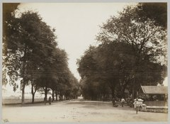 KITLV 12255 - Kassian Céphas - Tamarinde laan (avenue) with at the left fortress Vredeburg in Yogyakarta - Around 1900.tif