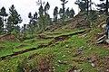 Kalam Valley96.jpg