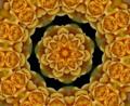 Kaleidoscope 1.png