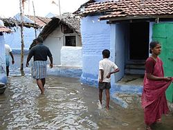 Houses flooded at Om Kaliamman Koil Street