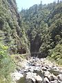Karangahake Gorge Battery Area Photos 04.jpg
