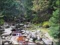 Karkonosze - panoramio (15).jpg