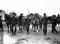 Kavallerie bereit zum Verladen auf die Eisenbahn - CH-BAR - 3236734.tif
