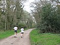 Keeping Fit by jogging along Common Road, Bookham Common - geograph.org.uk - 1236904.jpg