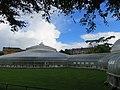 Kibble Palace (29396191673).jpg