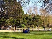 Kidd Springs Park 2