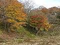 Kimigahatacho, Higashiomi, Shiga Prefecture 527-0202, Japan - panoramio (29).jpg