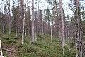 Kittilä, Finland - panoramio (16).jpg