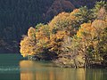 Komadate, Toyone, Kitashitara District, Aichi Prefecture 449-0402, Japan - panoramio (5).jpg