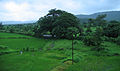 Konkan Railway - views from train on a Monsoon Season (20).JPG