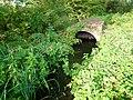 Konotopka River - 03.jpg