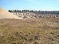 Kopalnia Kruszyw Lepino - panoramio (9).jpg