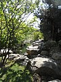 Koreanischer Garten (11).jpg