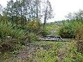 Krasnokamskiy r-n, Permskiy kray, Russia - panoramio (160).jpg