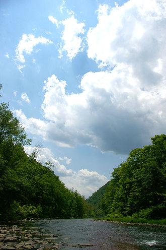 Pine Creek (Pennsylvania) - Pine Creek