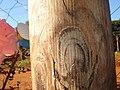 La virgen se presento en wanda en un tronco por - panoramio.jpg