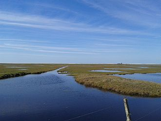 Lagoa do Peixe National Park - Image: Lagoa do Peixe Tavares