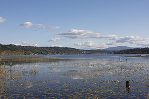 Lake Sammamish - Lake Sammamish from Marymoor Park