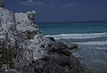 Land crab burrow - eroding. North shore. (38839623412).jpg