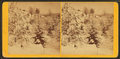 Landscape, Winter, from Robert N. Dennis collection of stereoscopic views 7.png