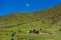 Landscape of Tibet3.jpg