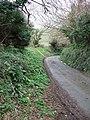Lane to Bowcombe - geograph.org.uk - 308079.jpg