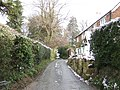 Lane to Comptons - geograph.org.uk - 320913.jpg