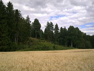 Battle of Langnes - The hill used for the Norwegian artillery battery