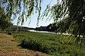 Lapela - El Miño entre árboles - panoramio.jpg