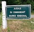 Le Touquet-Paris-Plage 2019 - Avenue du Commandant-Maurice-Seneschal.jpg