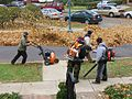 Leaf blowers in action, NY 2007.jpg
