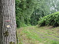 Leury (Aisne) le GR 12 passe à Leury.JPG