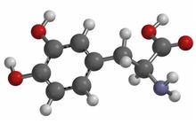 Rappresentazione grafica 3D di una molecola di Levodopa