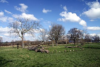 Little Wormwood Scrubs - Little Wormwood Scrubs in spring 2013