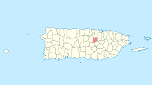 Location of Naranjito in Puerto Rico