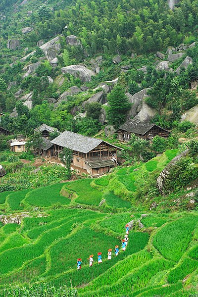 File:Longhui, Shaoyang, Hunan, China - panoramio - kiwifruit168 (9).jpg