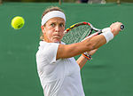 Lourdes Domínguez Lino 2, 2015 Wimbledon Qualifying - Diliff.jpg